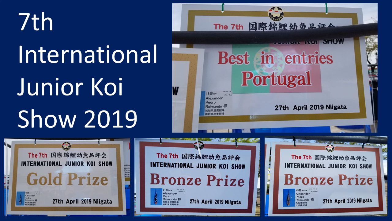 7th International Junior Koi Show - Japan 2019